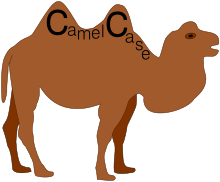 definition-camel-case