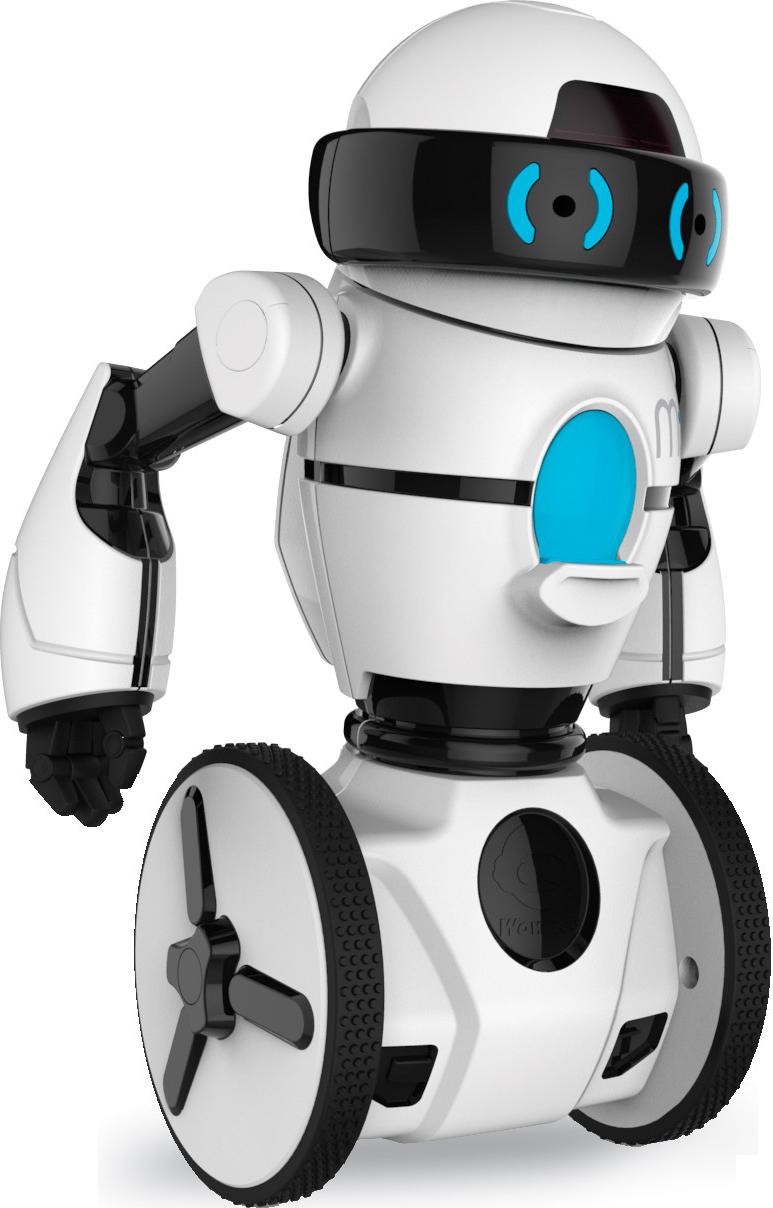 definition-robots-txt